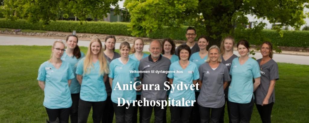Syg i Haderslev | Team AniCura Sydvet Dyrehospital Sommersted